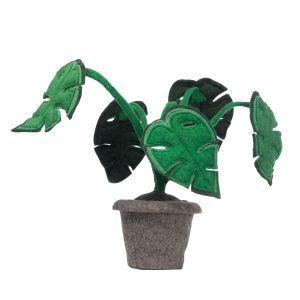 Plant KidsDepot Monstera