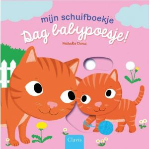 Mijn schuifboekje Dag Babypoesje!