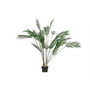 Plant Woood Palm Groen 110cm