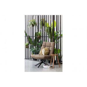 Plant Woood Varen Hangend 30cm 375138-G