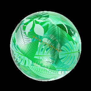 Strandbal Tropical Transparant