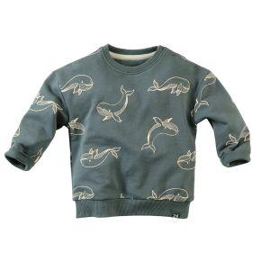 Sweater Z8 Z8CMINI21 Alladin Peaky Petrol